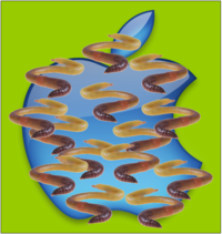 Apple-with-worms