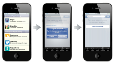 The Network Garden - Mark Sigal's Blog: Apple announces 'Custom B2B
