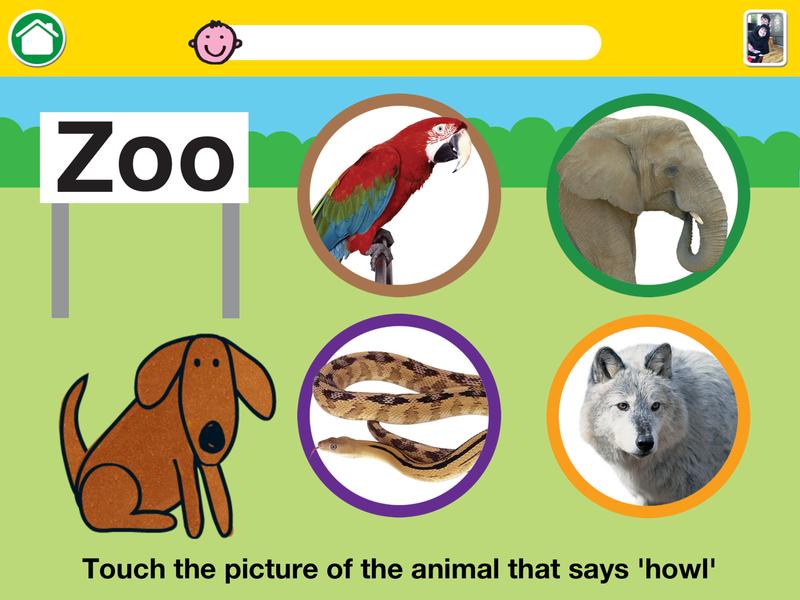 Noisy-Zoo