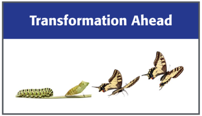 Transformation-Ahead